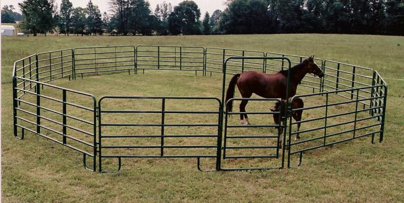 Corral Pen with a 4' walk-thru